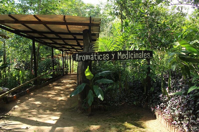 Mundo Amazonico, parc, Amazonie