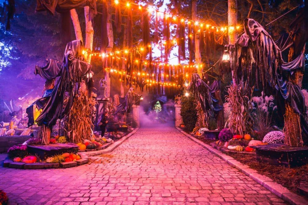 Nigoland, Halloween, France