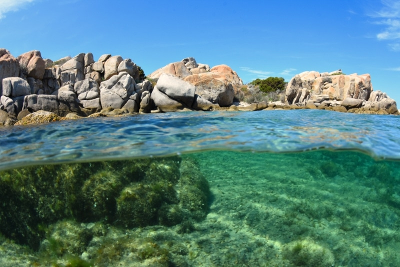 Plongée dans les îles Lavezzi en corse
