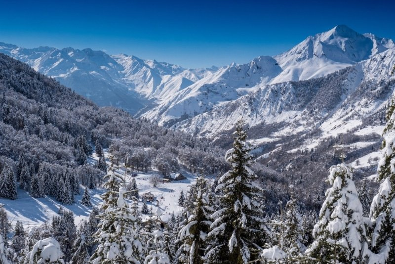 Pyrénées sous la neige chien de traineau sapins