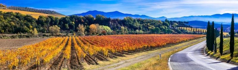 quand partir en toscane vue sur les vignes en automne