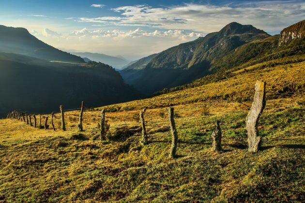 Virée luxuriante au parc de Los Nevados en Colombie