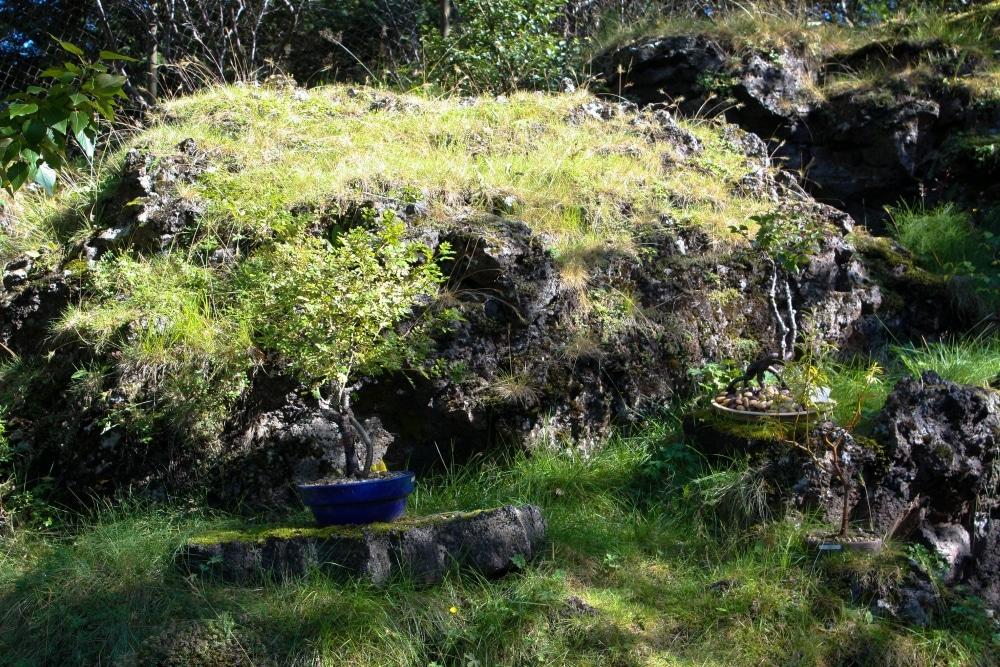 Hafnarfjörður elfes