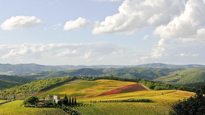 chianti en toscane vignes