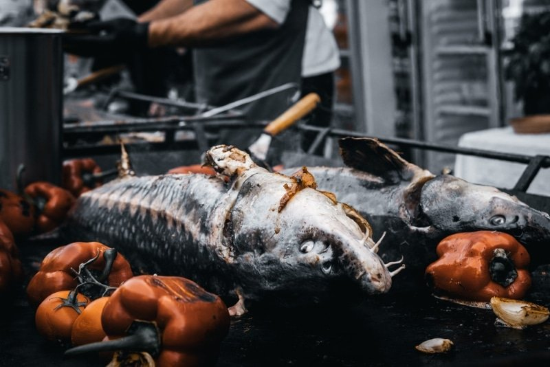 cuisine sibiu poisson roadtrip culinaire europe