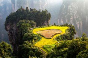 terrasse culture riz ecotourisme dans le monde