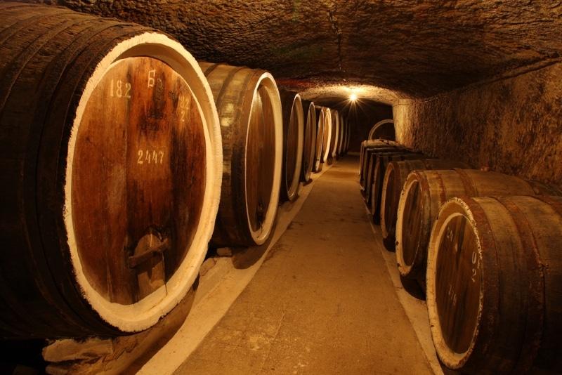 foudre cave cognac tonneau deguster vin france