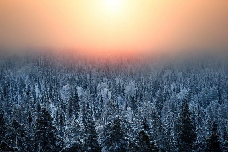 Visiter la Laponie en hiver