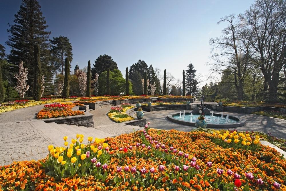 ile mainau jardins fleuris