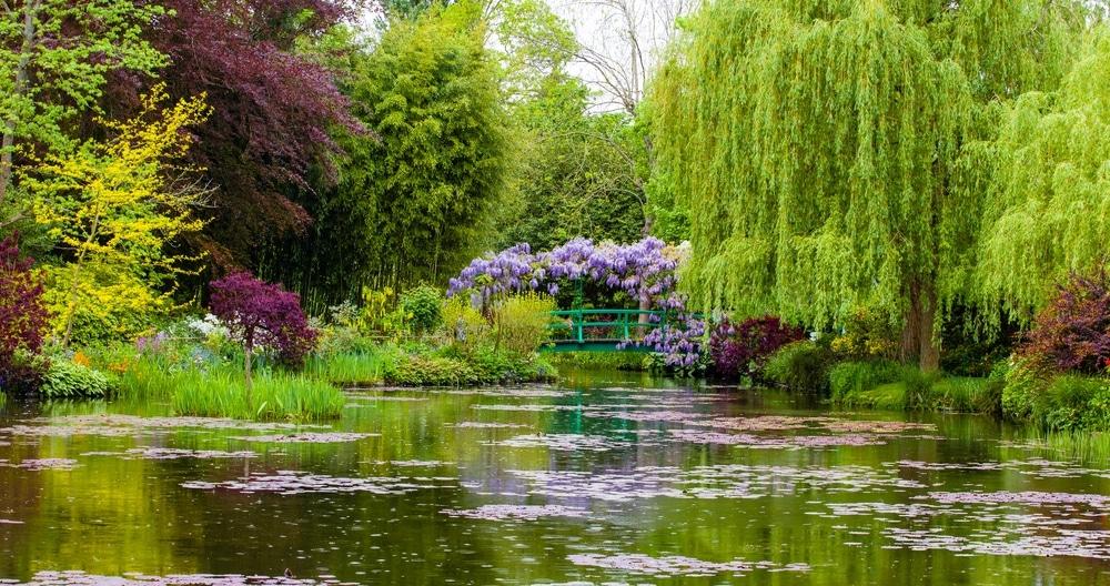 jardins de monet giverny lac et passerelle glycine