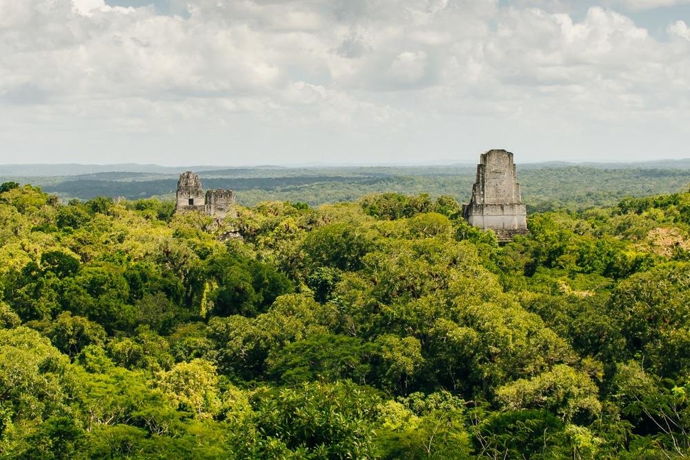 jungle guatemala temples maya