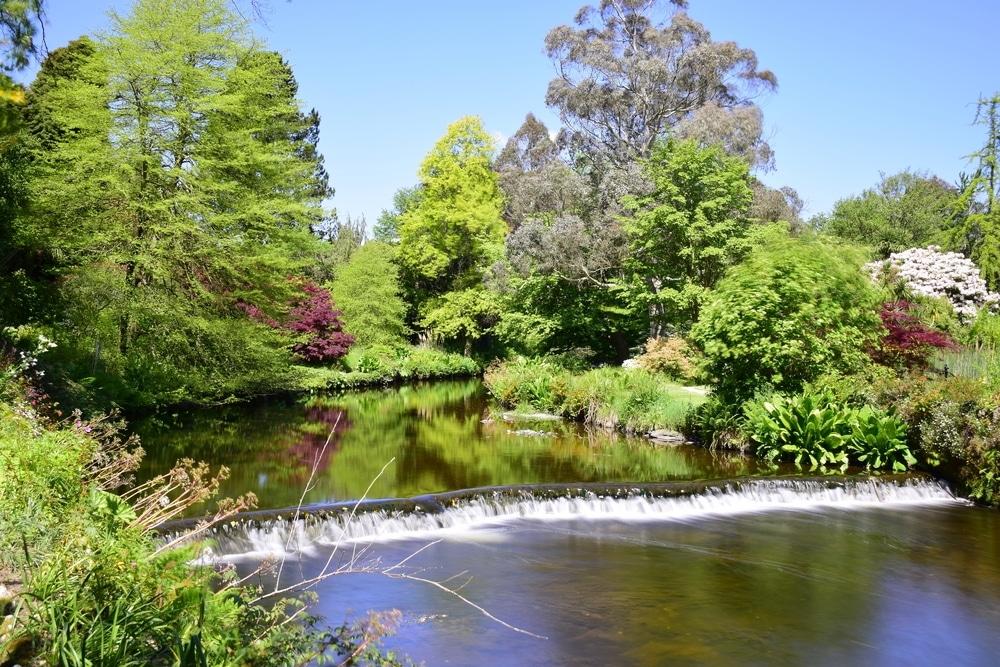 mount usher gardens irlande
