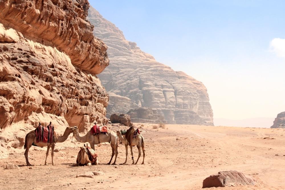 ou aller en 2020 jordanie desert