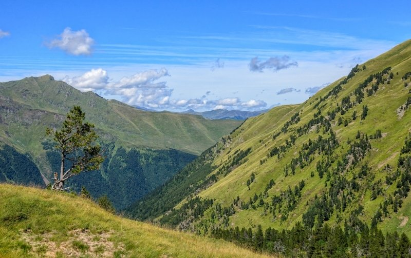 paysage pyrenees montagnes vertes