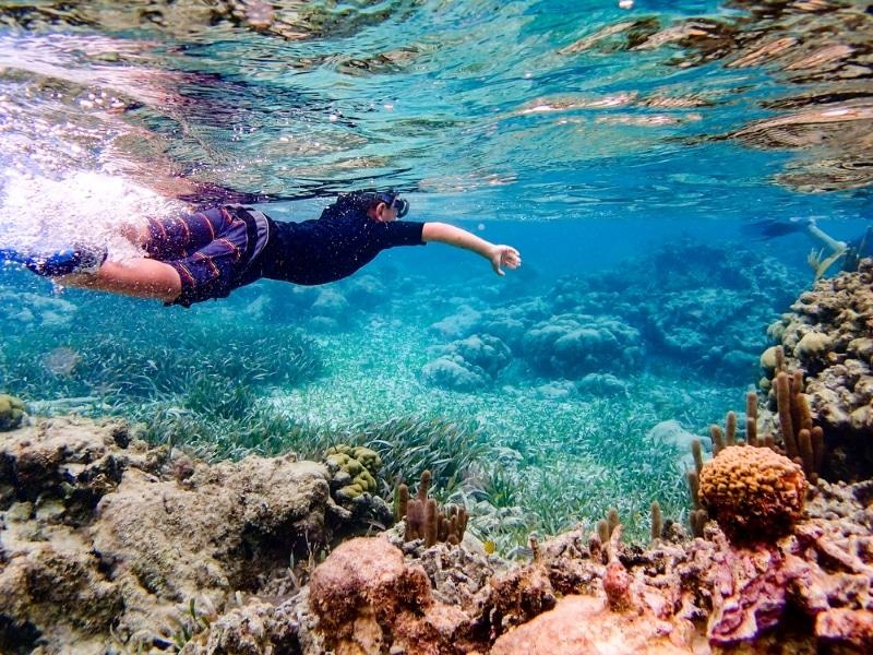 plongee sous marine au belize passer hiver au soleil