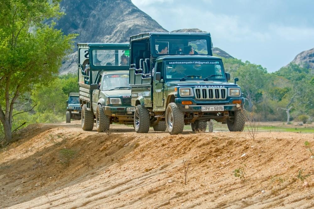 safari wilpattu sri lanka