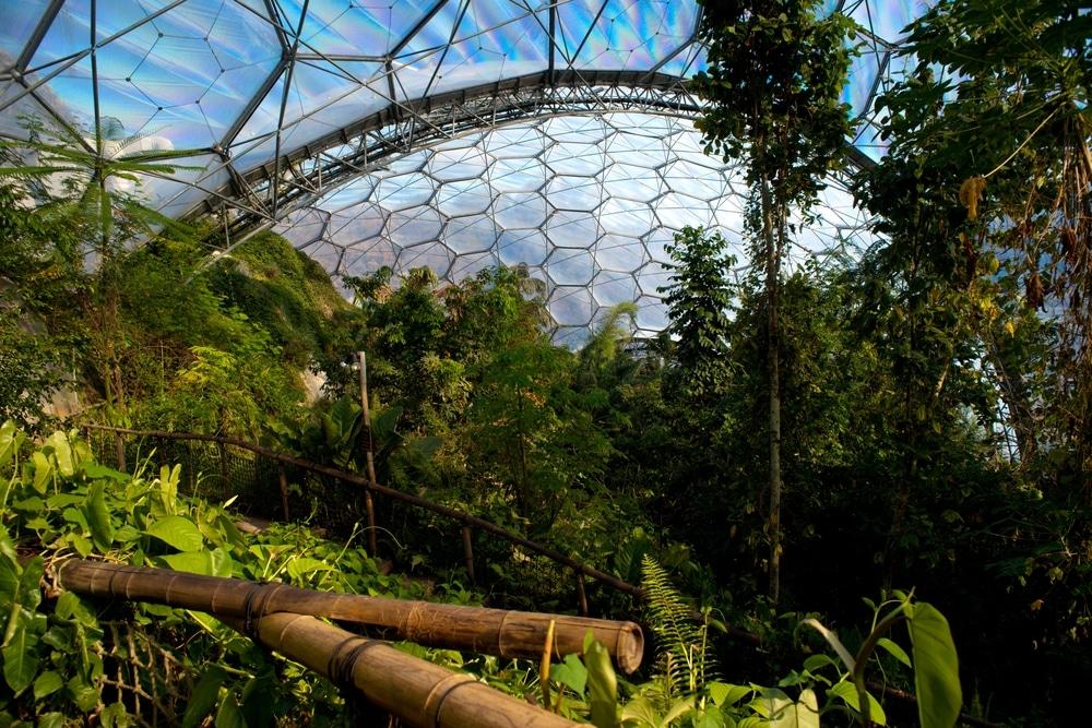 serre tropicale eden project cornouailles jardins en europe