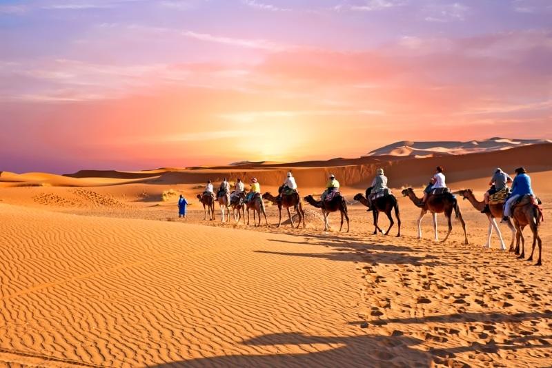 visiter le maroc en hiver les dunes du sahara avec caravane de chameaux