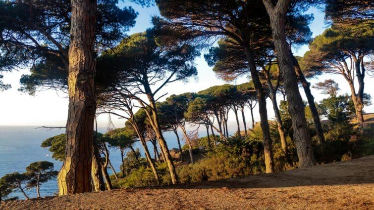 Le Parc Perdicaris, Tanger