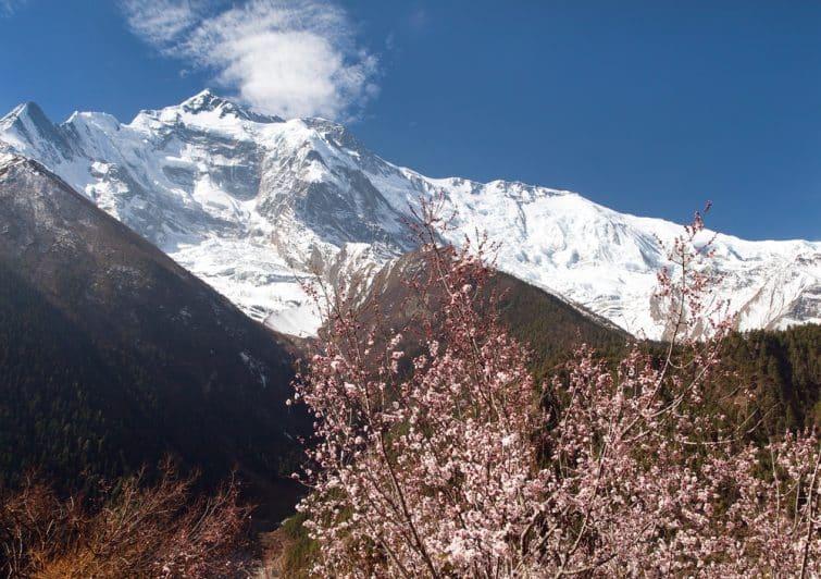 Tour des Annapurnas, Himalaya
