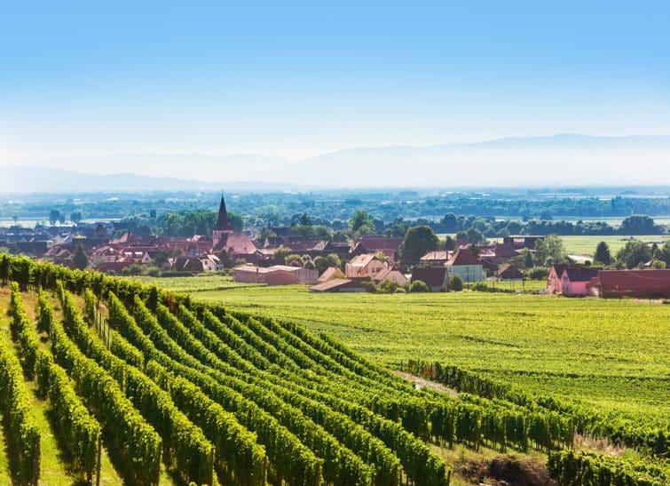 Vue aérienne de la vallée des fruits d'Alsace à Kaysersberg et dans la région de Colmar avec le village de Kientzheim en arrière-plan