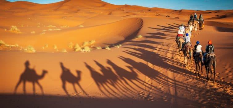 Désert de Dubaï en chameau