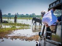 le parc national d'Uda Walawe en safari