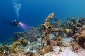 Plongée dans les récifs à Cuba
