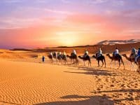 Caravane de chameaux traversant les dunes de sable dans le désert du Sahara, Maroc.