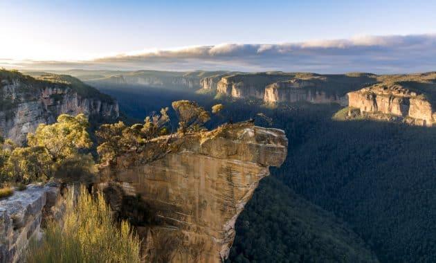 Guetteur de roche, Blue Mountains, Australie