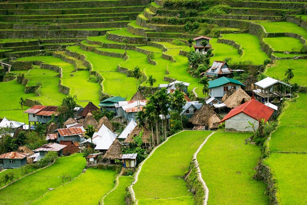 Terrasses de riz à Banaue, Philippines