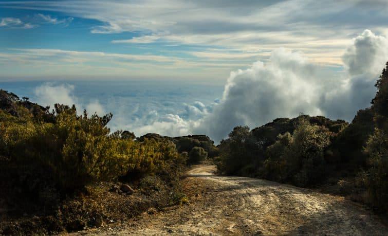Paysage dans la Cerro de la Muerte