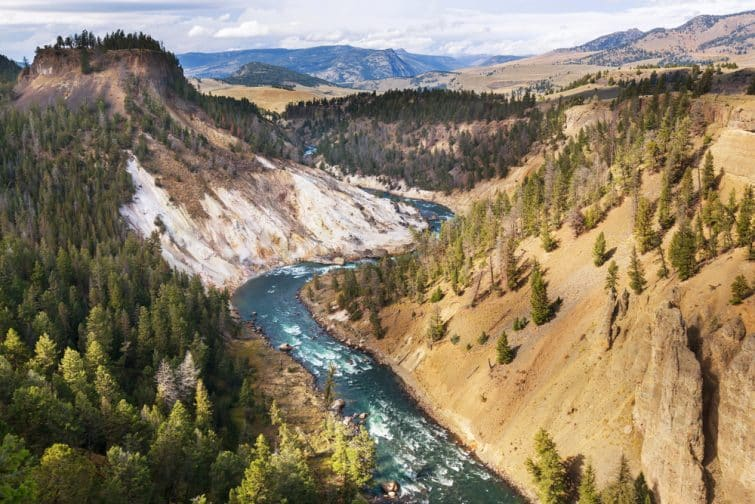 Grand Canyon du parc national de Yellowstone, Etats-Unis