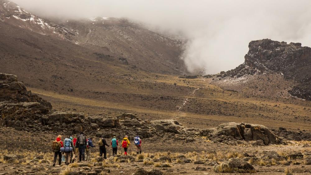 Randonnée à machame, Kilimandjaro