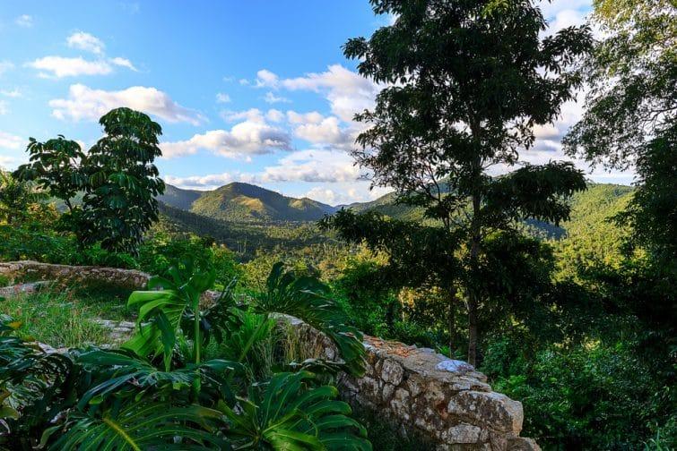 Forêt tropicale, Soroa