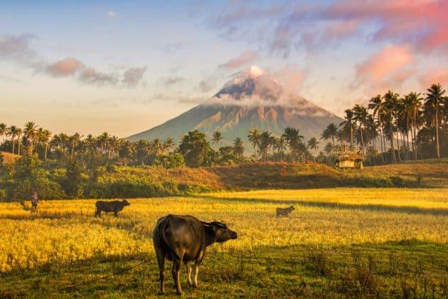 Les 11 plus beaux endroits à visiter aux Philippines