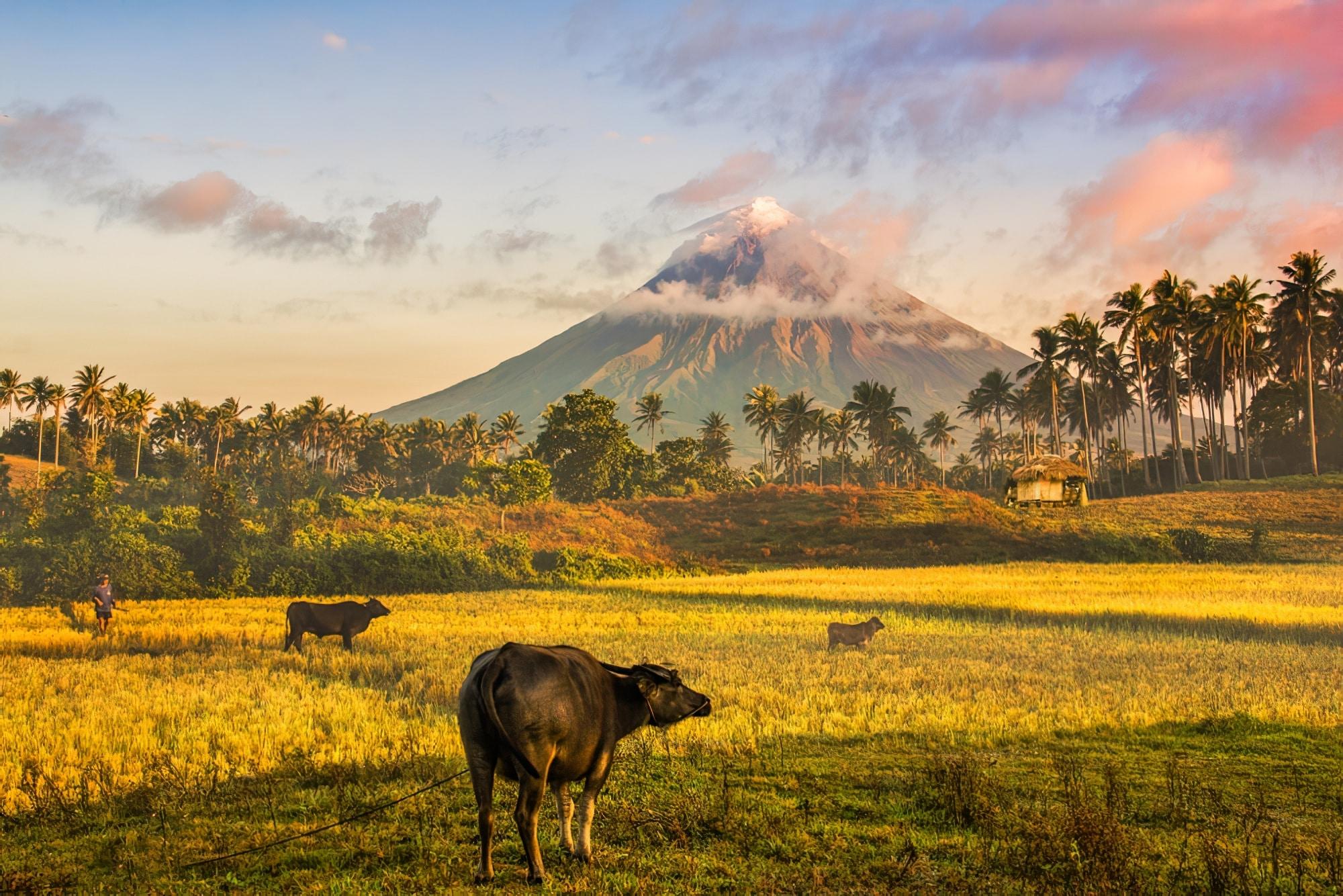 Vue sur le volcan Mayon aux philippines