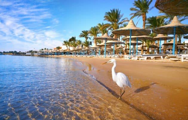 Les 9 choses incontournables à faire à Hurghada