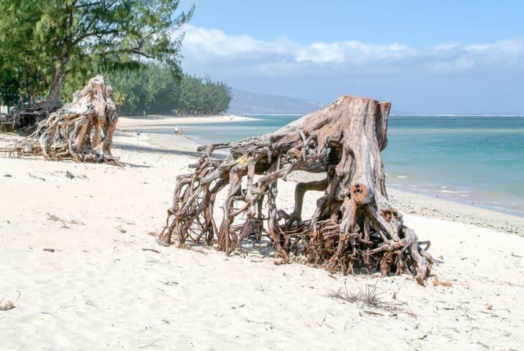 La plage de l'Hermitage sur l'île de La Réunion, France
