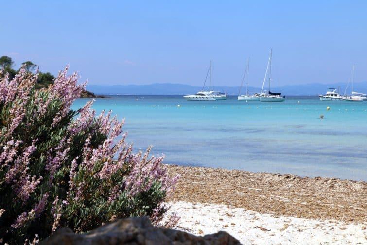 Porquerolles island, France. Beautiful view of Silver beach