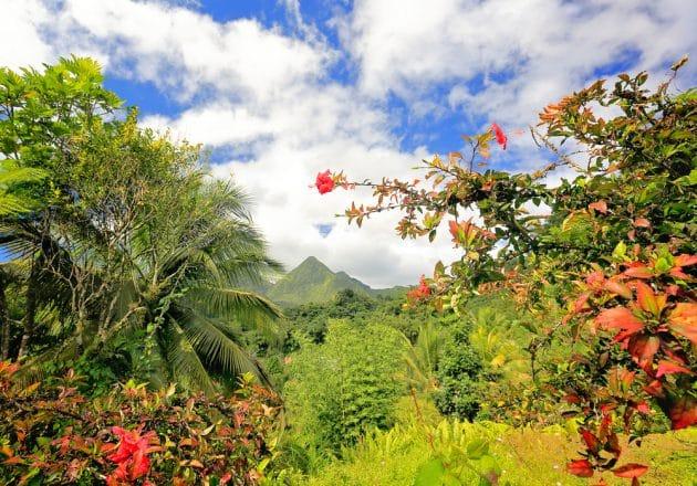 7 endroits où faire du canyoning en Martinique