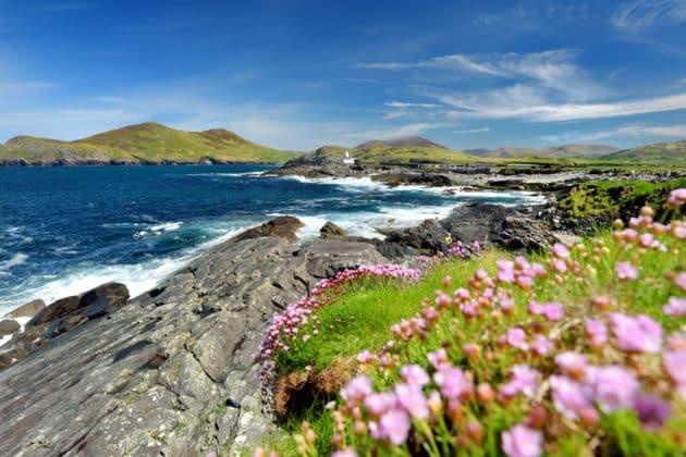Visiter l'Anneau du Kerry depuis Cork : réservations & tarifs