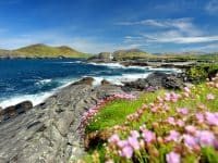 l'Anneau du Kerry depuis Cork