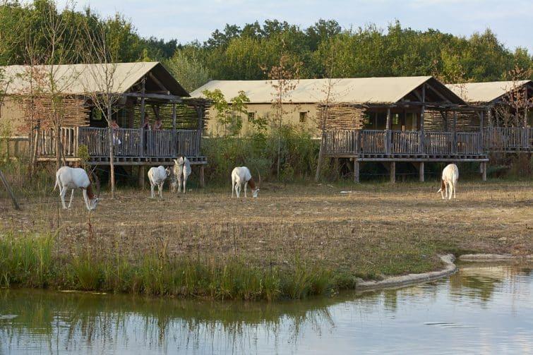 Lodge au parc animalier Le Pal