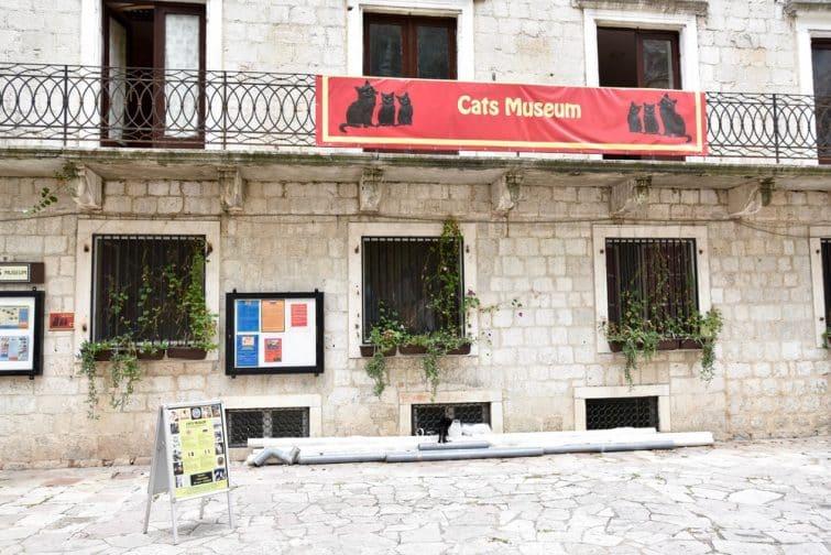 musée des Chats