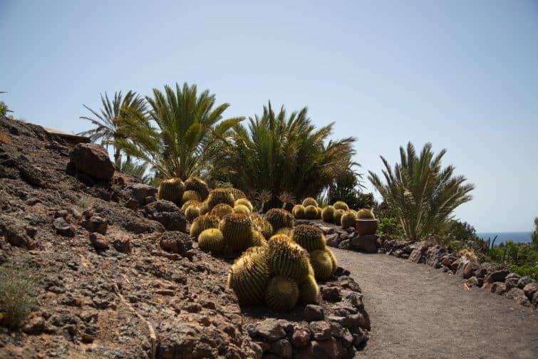 Oasis Park, Fuerteventura