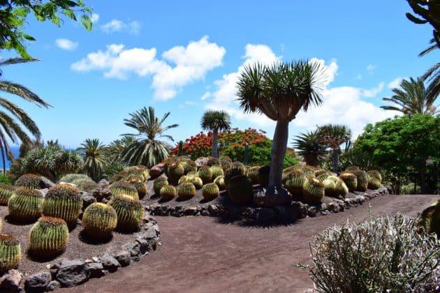 Visiter l'Oasis Park à Fuerteventura : billets, tarifs, horaires