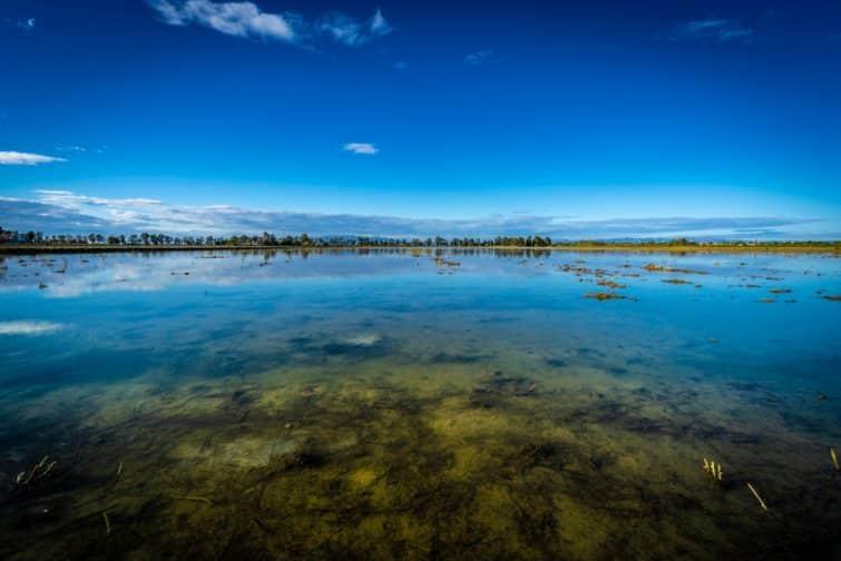 Parc Naturel du Delta de l'Ebre