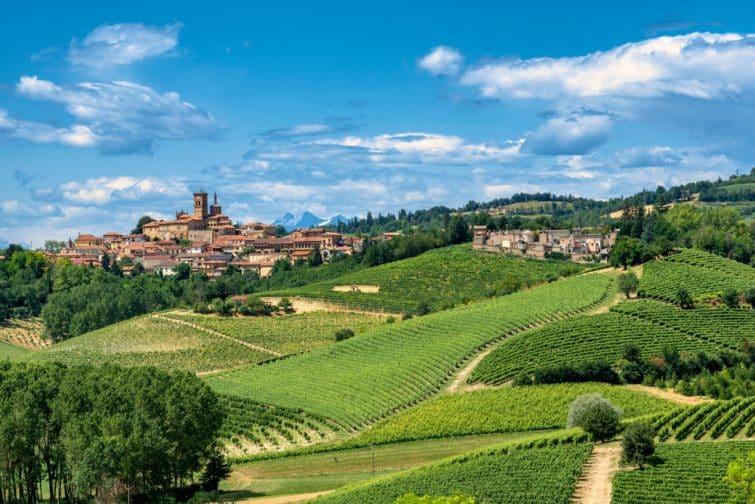 Vue d'Asti et ses vignobles