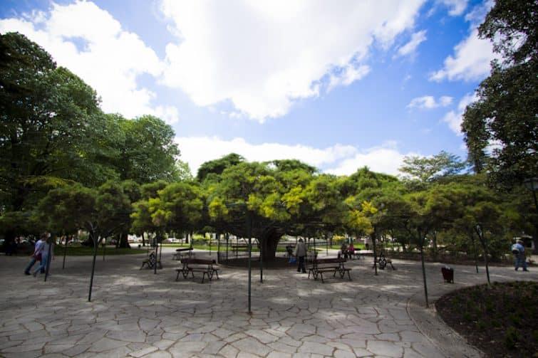 Jardin Principe Real, Lisbonne